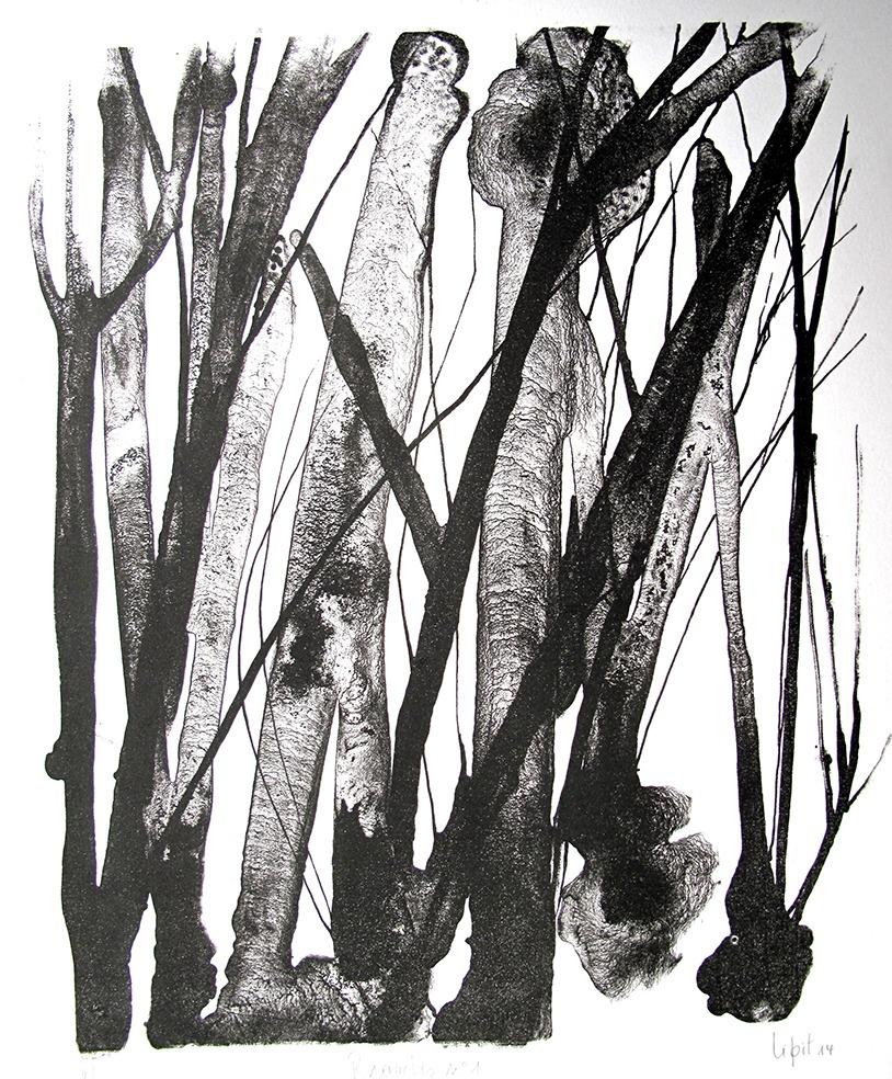 Branches n°1 (27 x 23 cm)