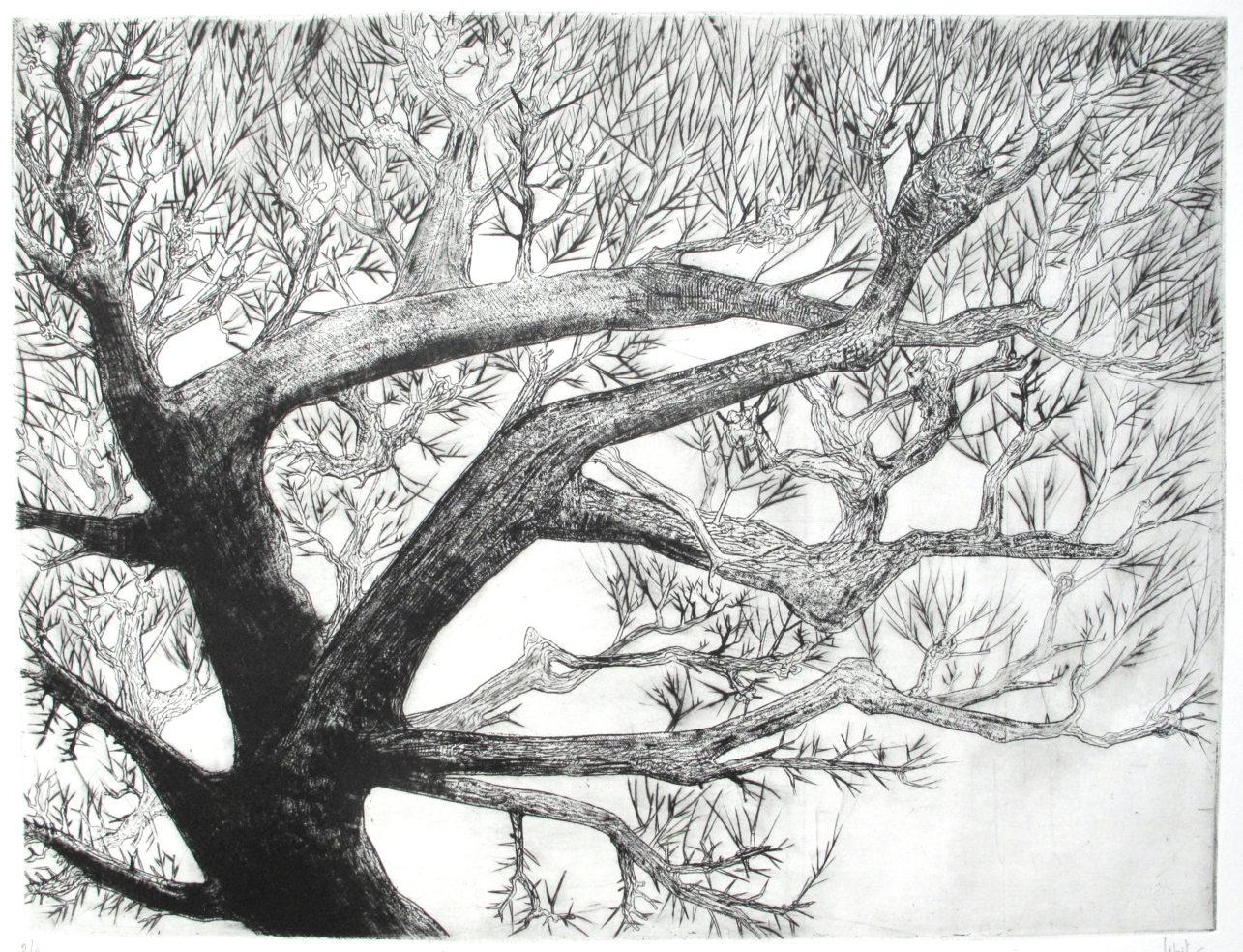 hiver (44x64 cm)