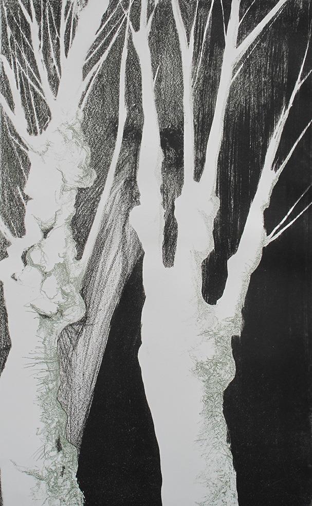 platane n°2 (45 x 28 cm)