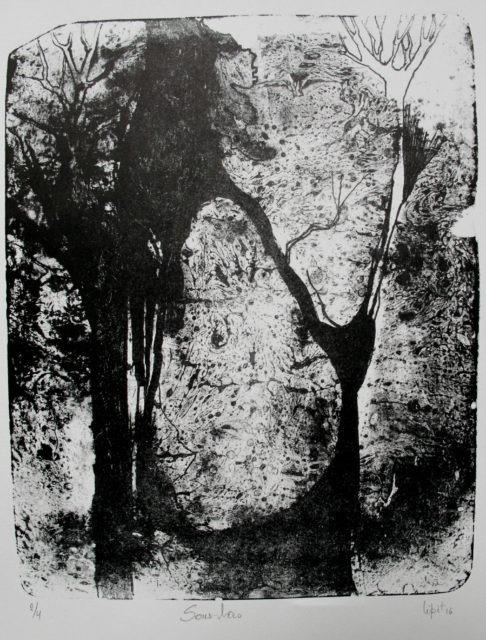 sous-bois (27x21,6 cm)