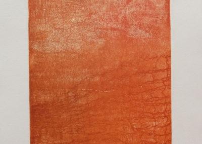 verni mou sur cuivre - 12-15,5